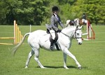 LINK TO - Lancaster_Pony_Club May_Day_Show Mon_2nd_May_'11 Equitation_Classes portfolio
