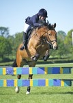 LINK TO - Lancaster_Pony_Club Open_May_Day_Show Mon_2nd_May_'11 Show_Jumping_Classes portfolio
