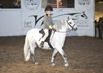 LINK TO - Barton_EC Sun_6th_Nov_'11 WinterRidingClub InHandChampionship and_RiddenClasses portfolio